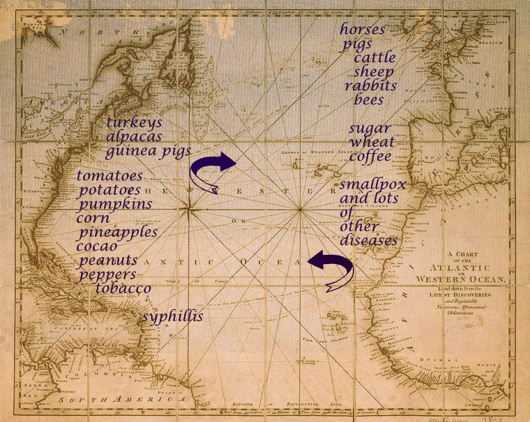 columbian exchange The columbian exchange is named for the period of time following the european  conquests of the americas and the people, plants, animals,.