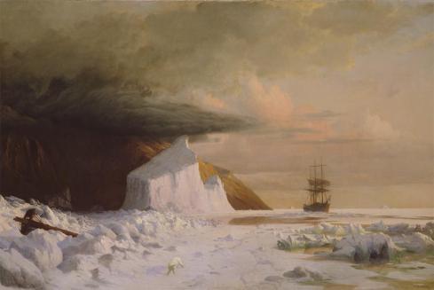 Arctic Bradford