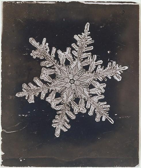 First Snow Wilson Alwyn Bentley 1910