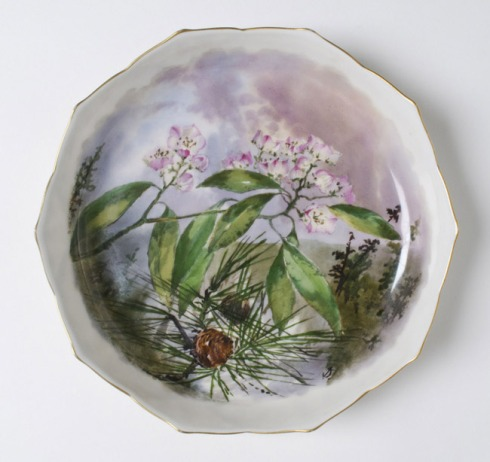 Presidential China Hayes Soup Plate 1880