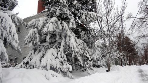 Snow 2 028