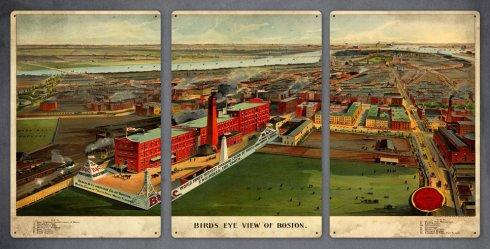 Boston Birds Eye Triptych