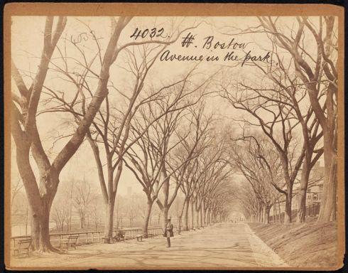 Boston Francis Frith