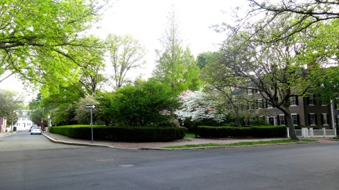 McIntire Park 2 006