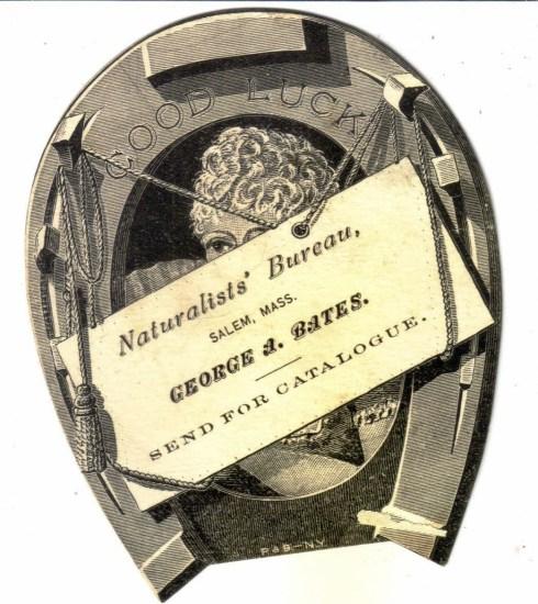 Salem Trade Card Bates Publisher 2