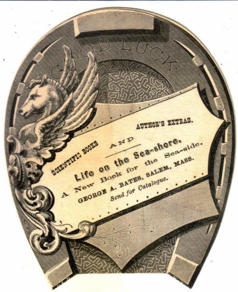 Salem Trade Card Bates Publisher