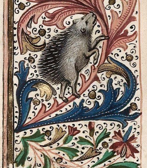 Hedgehog and Ape-001