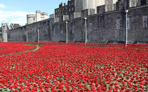 Poppies Tower