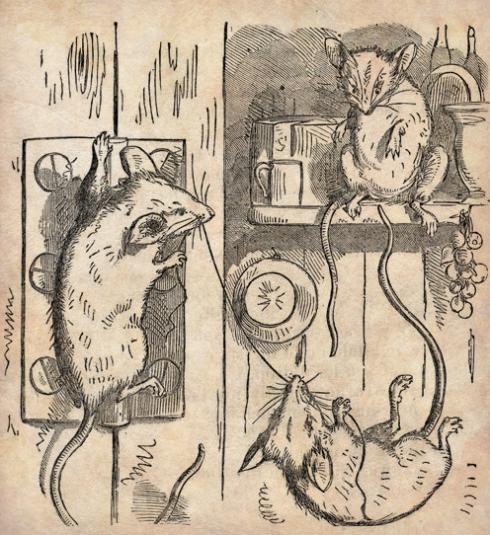 Mice Homer 1858