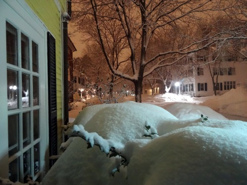 Snow again 026