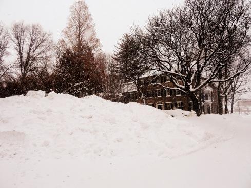Snow Sculptures 008