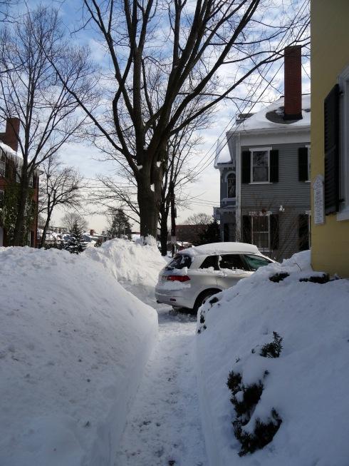Snowbanks 015
