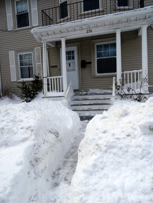 Snowbanks 026