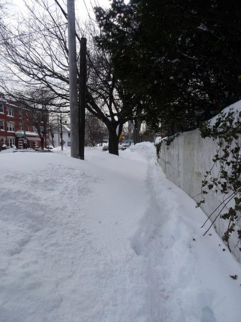 Snowbanks 033