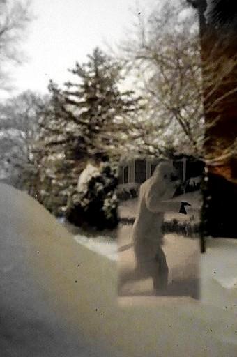 Yeti in Salem Feb 14