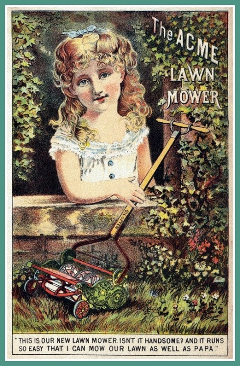 Ladies Lawnmower BPL DC