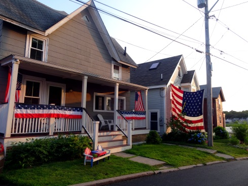 Red White Blue Calico 10