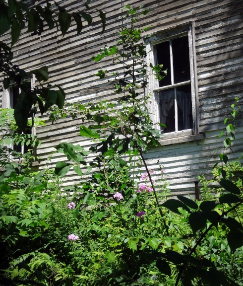 Abandoned House Essex 4