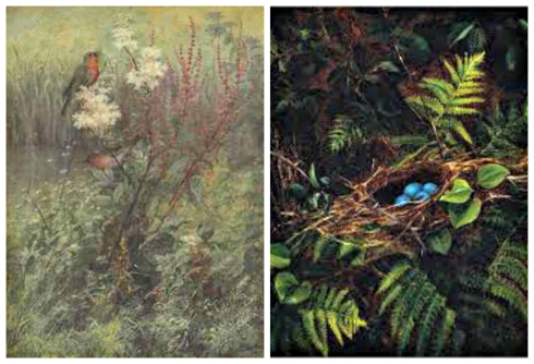 Fidelia Bridges Songbird and Ferns