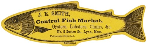 Oyster Square Trade Card Lynn
