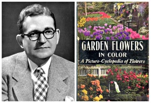 Gables Garden Dan Foley