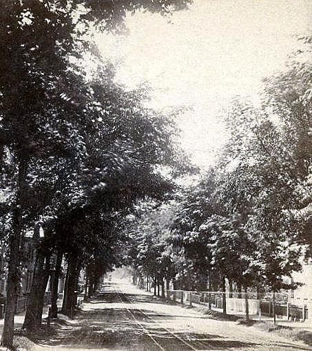 Lafayette Street Cousins cropped 1891