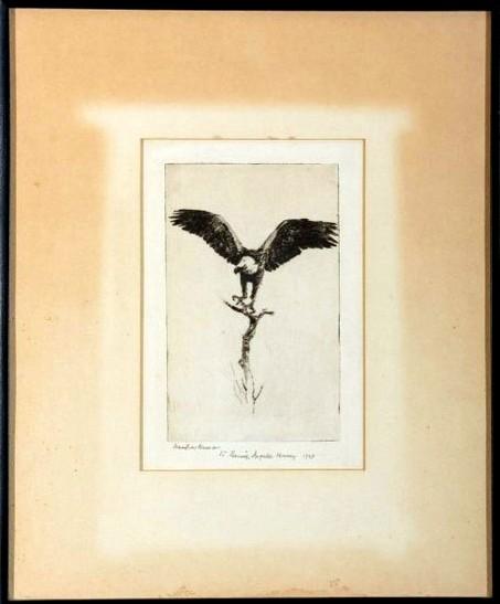 Hussey Eagle Benson