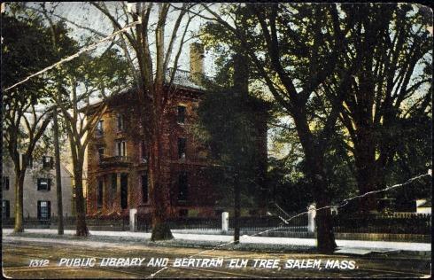 Elm Salem Bertram postcard