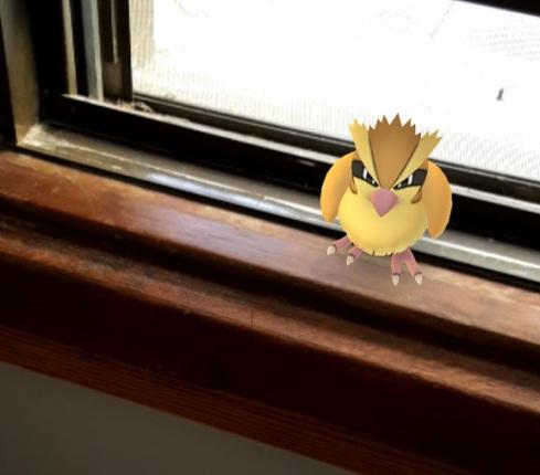 Pokemon office 2