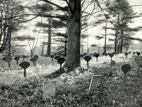 Shaker Cemetery gleaningsfromold00sear_0375