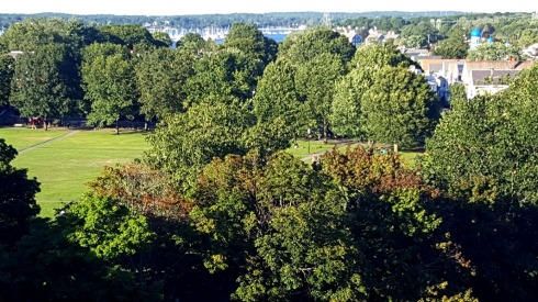 View of Salem Common