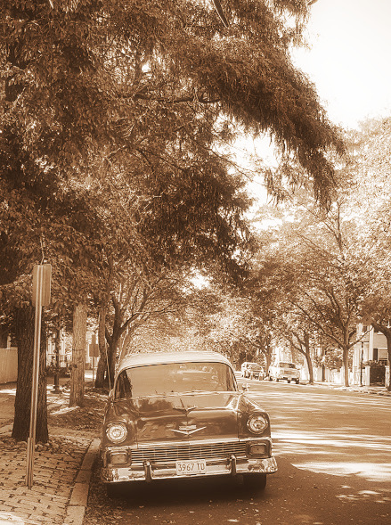 filtered-car-chestnut