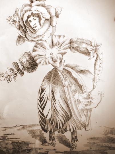 endicott-swett-botanist-print