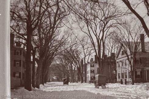 snow-chestnut-street-1899-harvard