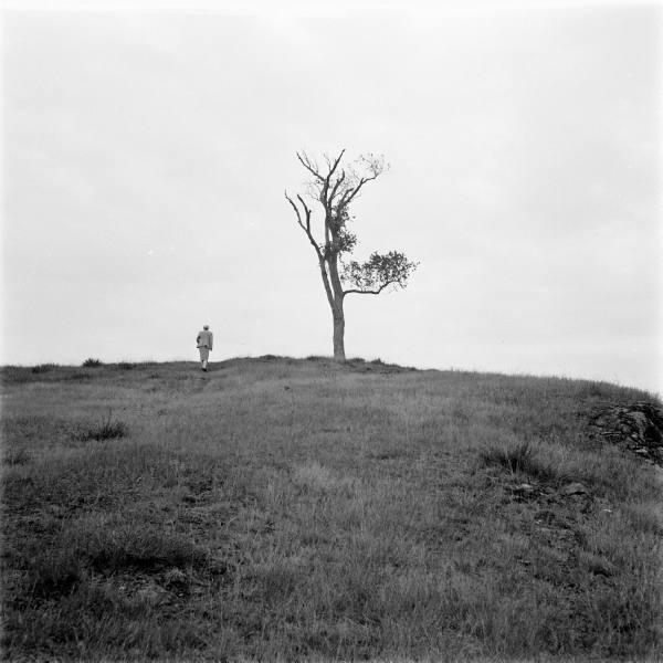 Starkey Gallows Hill