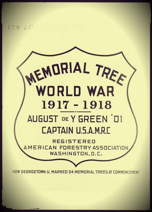 Memorial Tree Badge LC
