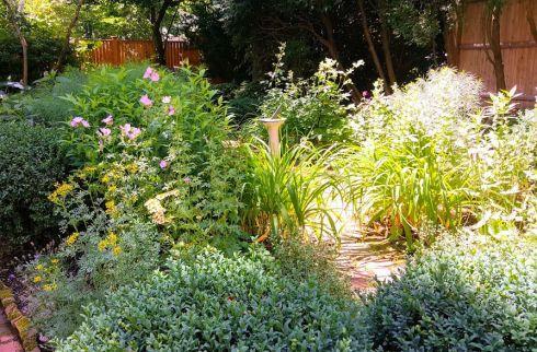 Garden First