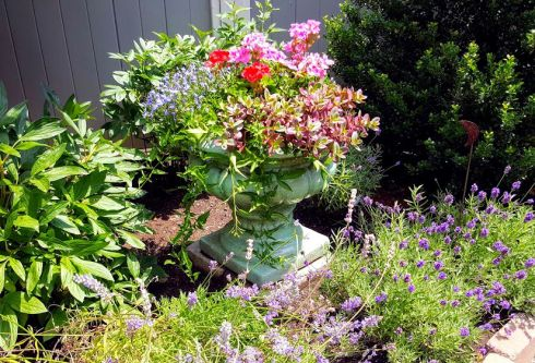 Garden Tour Federal 7
