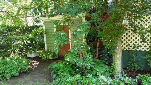 Garden Tour Shed