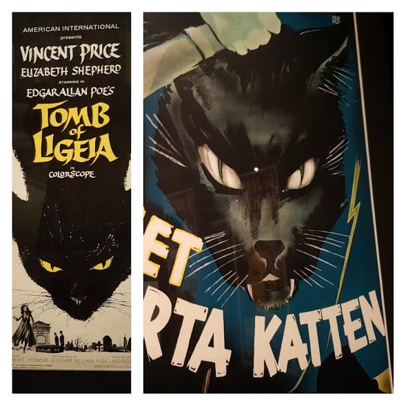 PEM EX CATS