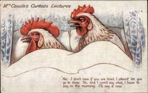 Curtain Lectures Chickens