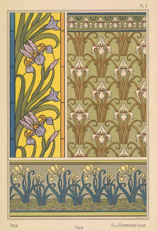 Grasset Iris 2