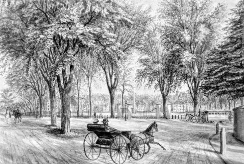Common 1863