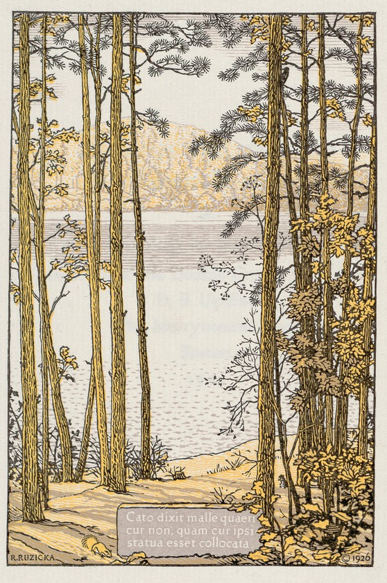 ruzicka walden pond