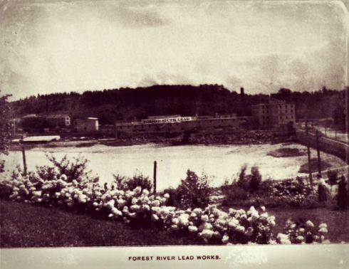 Salem 1897 Forest River