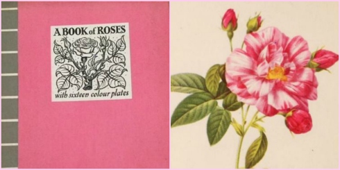 Roses Collage 2